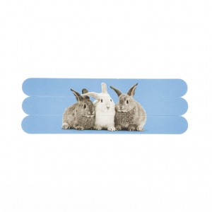 Catseye Rabbit on Blue Nail Files