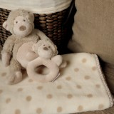 Lovely Monkey Gift Set