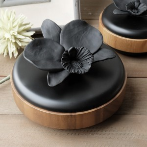 Conceal Cosmos Container