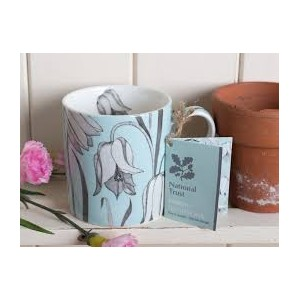 national trust Fritilitry Fine China Mug, Duck Egg