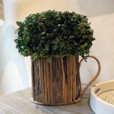 Boxwood Watering Can
