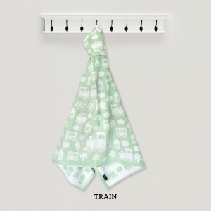 TRAIN HOODED TOWEL (GREEN)