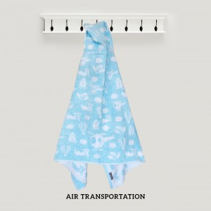Air Transportation BLUE Hooded Towel