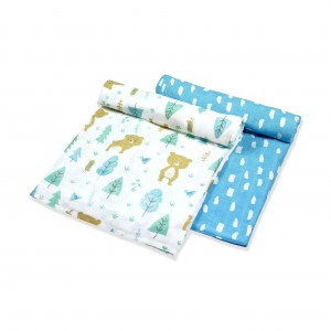 Into The Woods Muslin Swaddle Set of 2 (Boy)